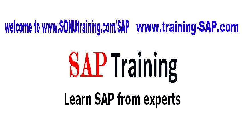 SAP Training